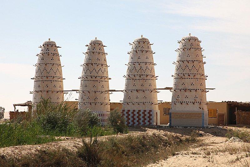 Aegypten Siwa Taubentuerme
