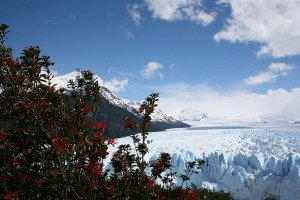 Argentinien Glaciar Perito Moreno