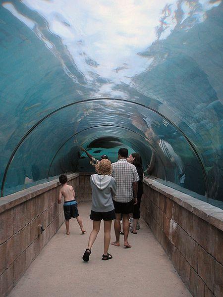Nassau - Unterwassertunnel