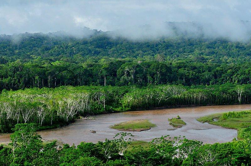 Nationalpark Madidi
