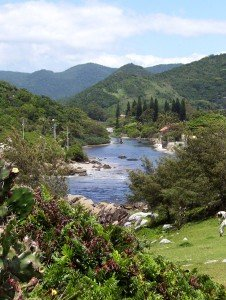 Brasilien Florianopolis Isla Santa Catarina