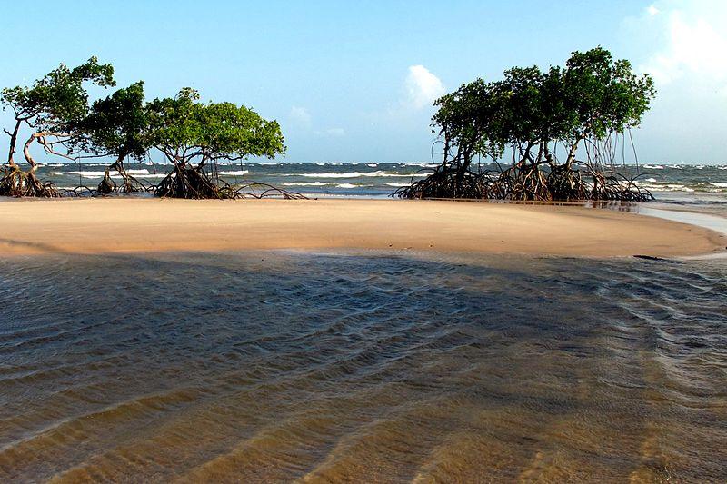 Brasilien - Marajo Island