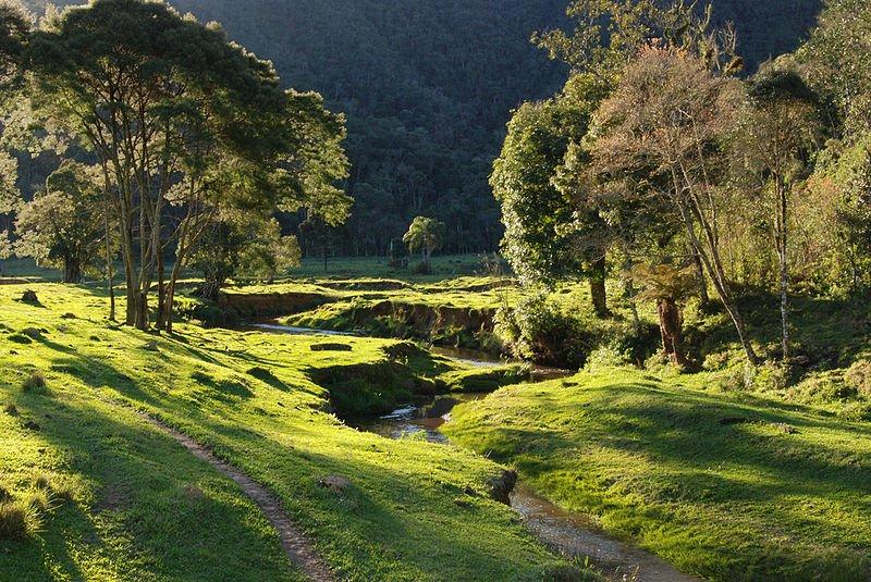 Brasilien - Parque Nacional da Serra do Itajaí