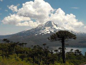 Chile Parque Nacional Conguilliok