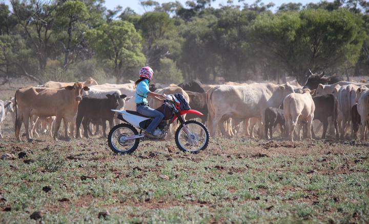 Stephie Hauk auf einer Rinderfarm im australischen Busch