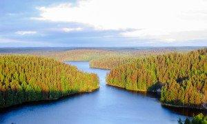 Finnland Repovesi National Park