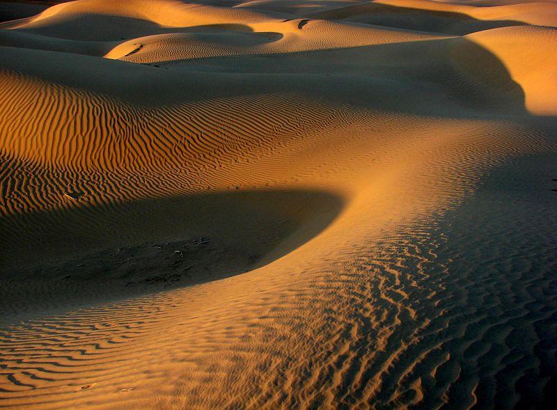 Indien Wüste Thar