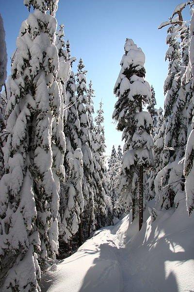 Kanada Cartier National Park