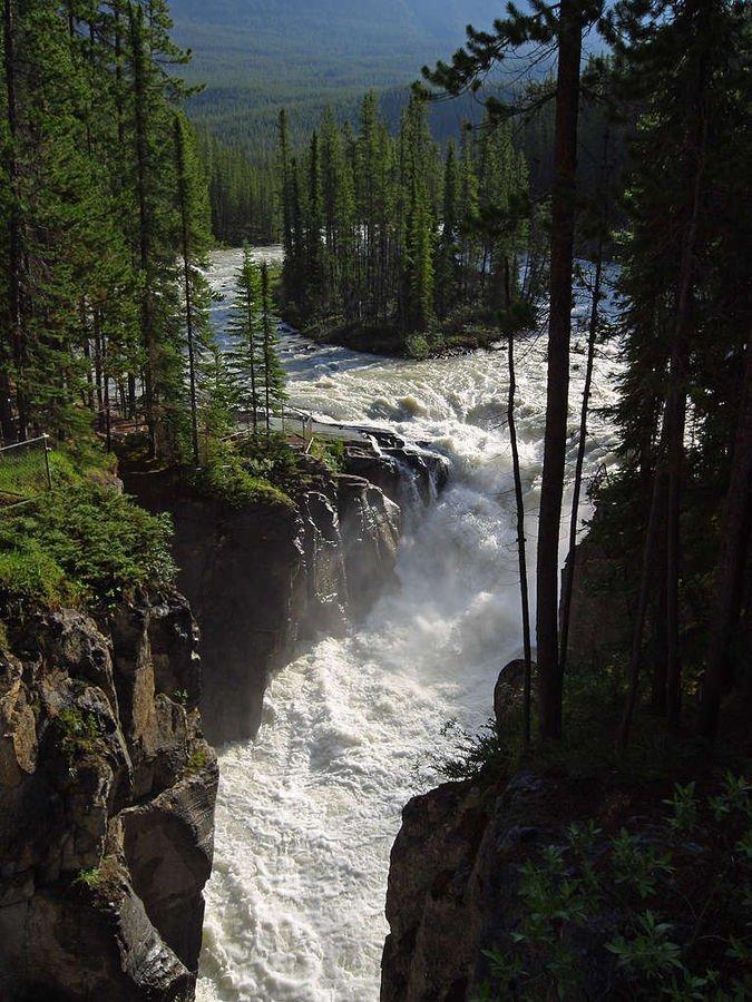 Kanada Jasper National Park Sunwapta Falls