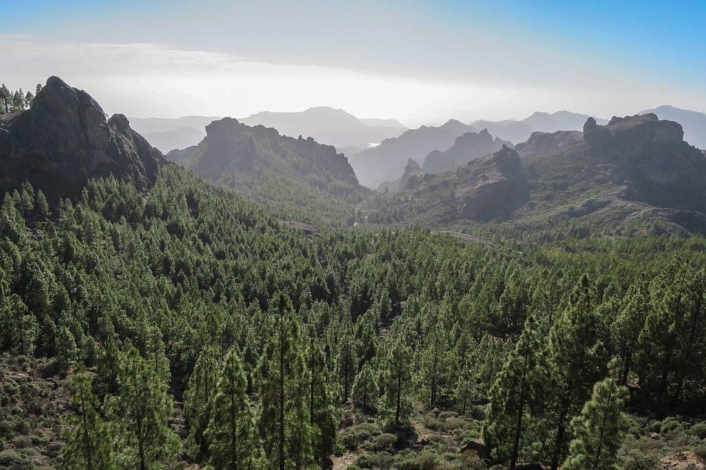 Kanaren - Gran Canaria