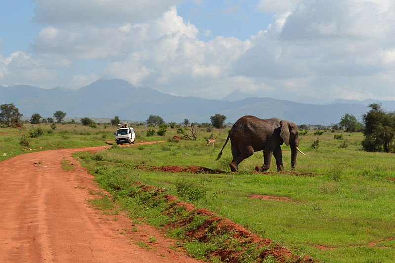 Kenia Taita Hills Wildlife Sanctuary