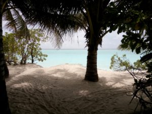 Malediven - Thoddoo
