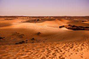 Marokko - Wüste