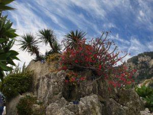 Monaco - Natur