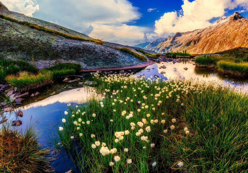 Neuseeland - Landschaft