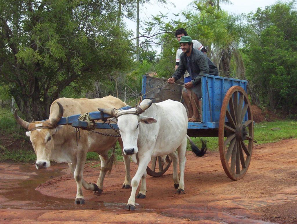 Paraguay - Transportmittel