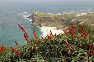 Suedafrika Kap der guten Hoffnung